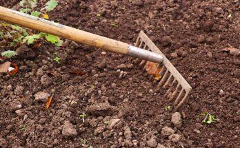 Обработка почвы на огороде