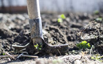 Перекопка и рыхление почвы
